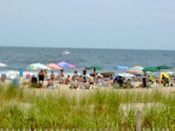 Ocean Grove Beach Fees